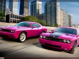 thumbs 2010 dodge challenger rt classic furious fuchsia front at Dodge History & Photo Gallery