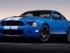 2010-shelby-gt500_2.jpg