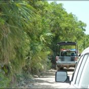 motorward off road mexico 17 175x175 at Off Roading with Motorward to Sian Kaan   Mexico