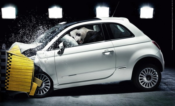 Fiat Panda 600x362 at All You Need to Know About Crash Tests