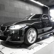 Mcchip BMW 220i-1