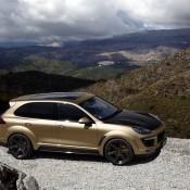 TopCar Cayenne Vantage Gold-15
