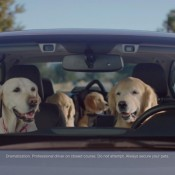 """Subaru Puppy Bowl 175x175 at Subaru Brings Back the Dogs for """"Puppy Bowl"""" Ads"""