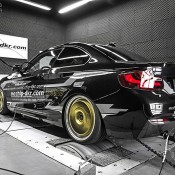 Mcchip BMW 220-6