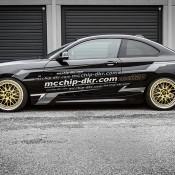 Mcchip BMW 220-8