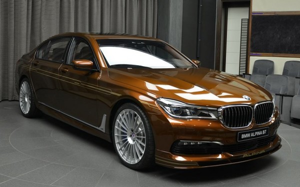 Chestnut Bronze Alpina B7-0