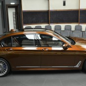 Chestnut Bronze Alpina B7-10