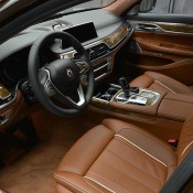 Chestnut Bronze Alpina B7-17