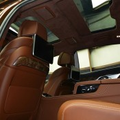 Chestnut Bronze Alpina B7-18