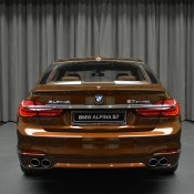 Chestnut Bronze Alpina B7-23