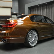 Chestnut Bronze Alpina B7-24