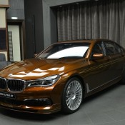 Chestnut Bronze Alpina B7-4