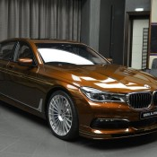 Chestnut Bronze Alpina B7-5