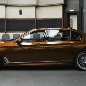 Chestnut Bronze Alpina B7-6