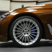 Chestnut Bronze Alpina B7-7