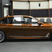 Chestnut Bronze Alpina B7-9