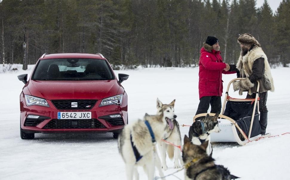 Cupra vs Husky 0 at SEAT Leon CUPRA Takes on Six Siberian Huskies!