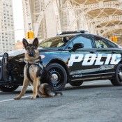 Police-Responder-Hybrid-Sedan-6