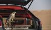 Bentley Bentayga Falconry by Mulliner