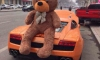 Teddy Bear on Lamborghini Has Become a Trend!
