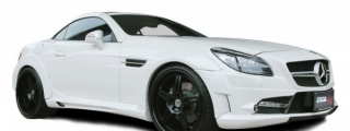 Expression Motorpsort Mercedes SLK Wide Body R