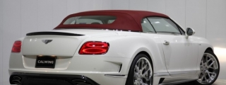 Splendid: Mansory Bentley Continental GT