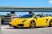 Unique Lamborghini Gallardo on Forgiato Wheels