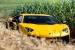 Gallery: Giallo Orion Lamborghini Aventador SV