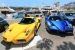 Blue and Yellow Ferrari Enzo Duo Spotted in Monaco