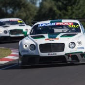 Bentley Continental GT3 Bathurst 5 175x175 at Gallery: Bentley Continental GT3 at Bathurst