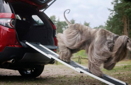 Land Rover Launches Dog Friendly Pet Packs 1 550x360 at Land Rover Launches Dog Friendly Pet Packs