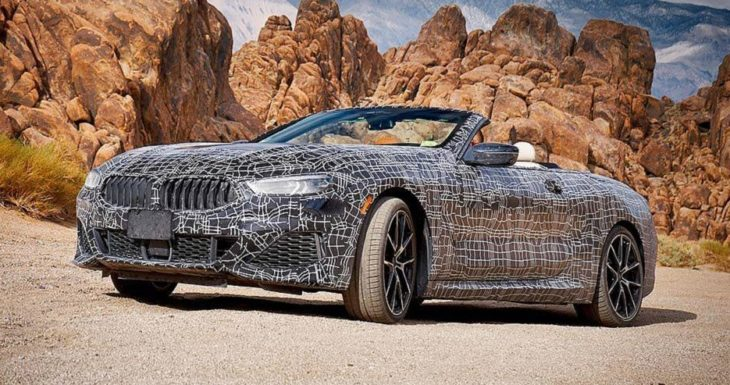 bmw 8 series convertible 6 730x385 at New BMW 8 Series Convertible Official Spy Shots