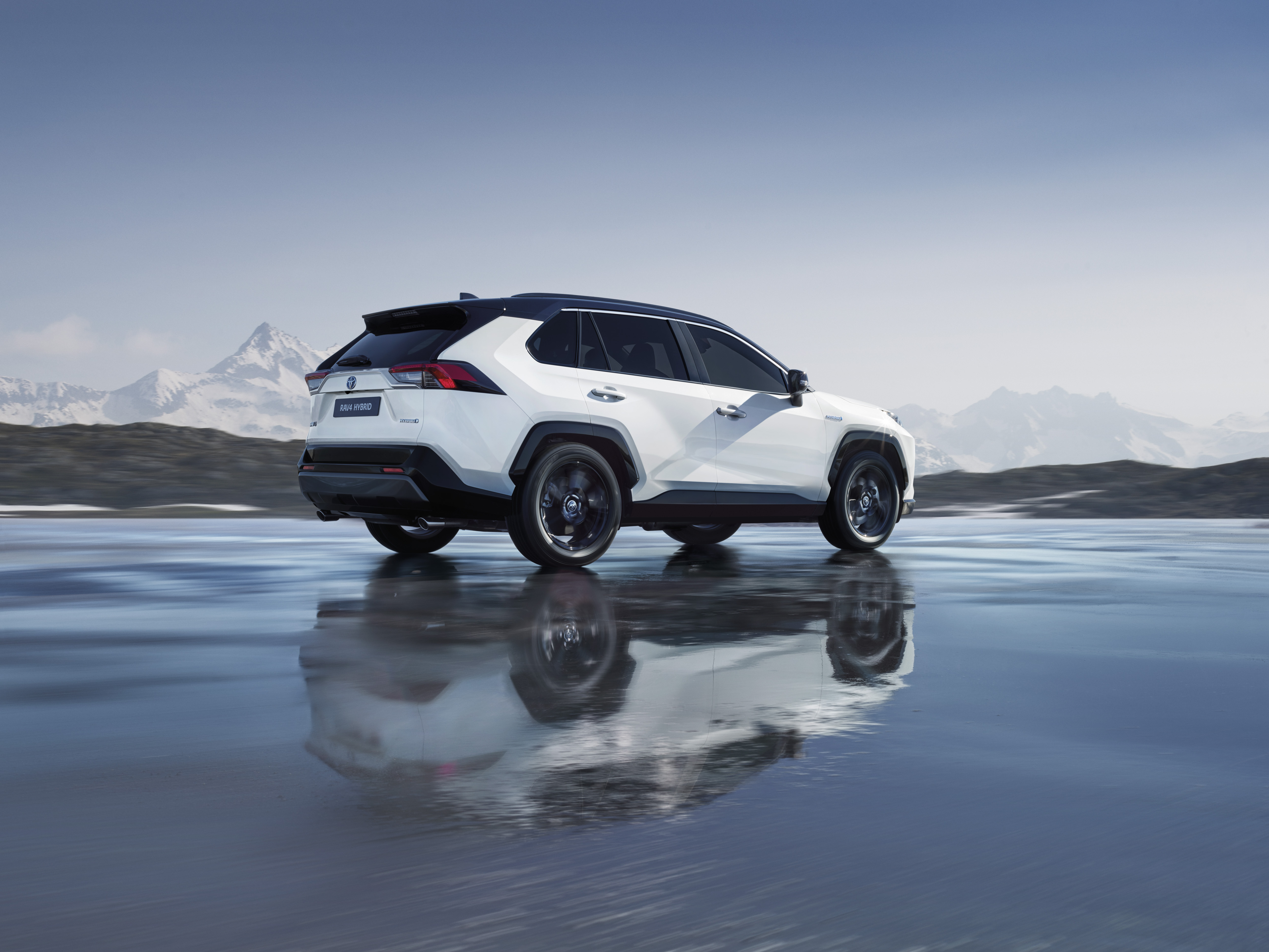 2019 toyota rav4 hybrid an suv with 4 5 l 100 km consumption. Black Bedroom Furniture Sets. Home Design Ideas