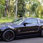 AM Mustang 175x175 at AmericanMuscle Customer Spotlight Video | 2012 GT