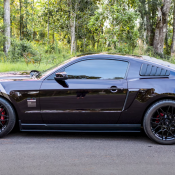AM Mustang 3 175x175 at AmericanMuscle Customer Spotlight Video | 2012 GT