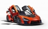 Last McLaren Senna Already Auctioned for Charity