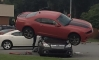 Camaro Thinks It's a Transformer, Tries to Hump a Subaru!