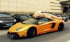Gallery: DMC Lamborghini Aventador Teddy Bear Edition!
